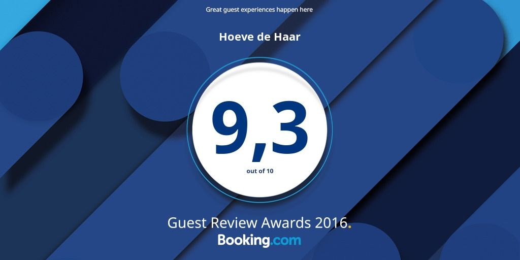 Guest-Review-Award-2016-Bookingcom